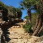 Sycylia: Riserva dello Zingaro